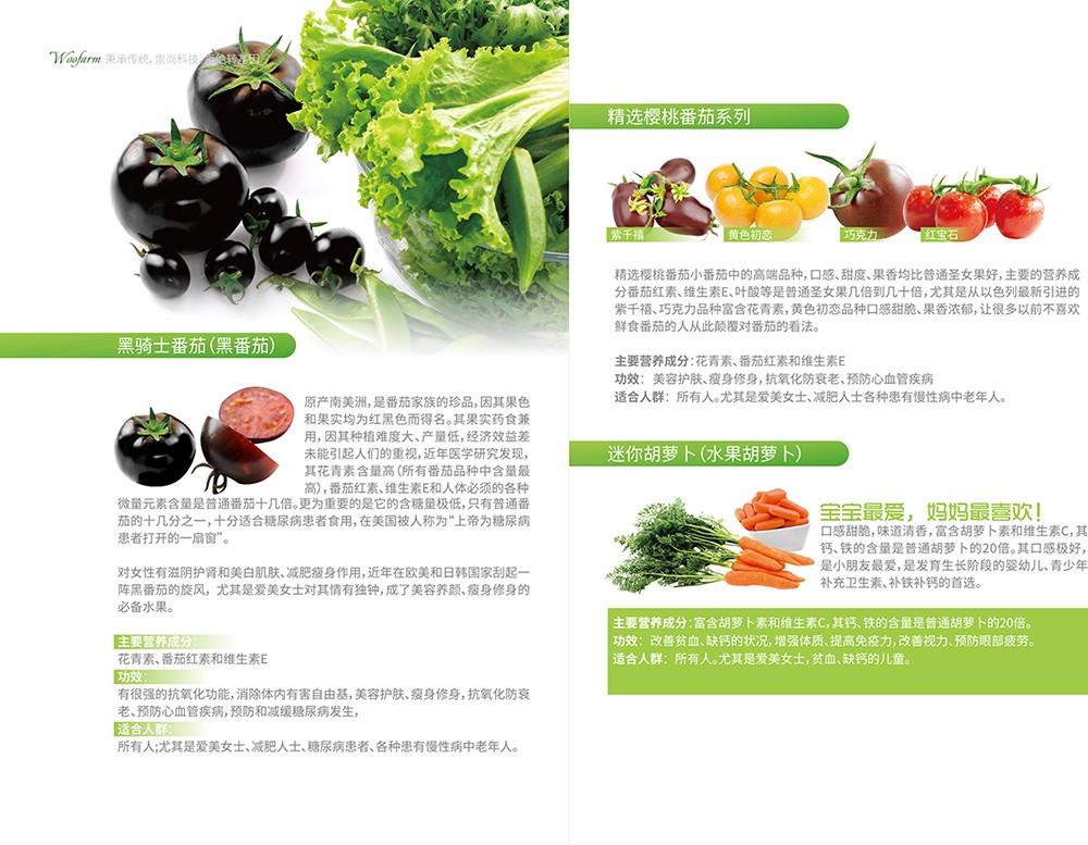 农产品画册设计,农副产品画册设计公司