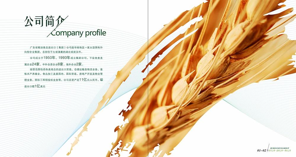 广州油粮食品画册设计-广州食品类画册设计公司
