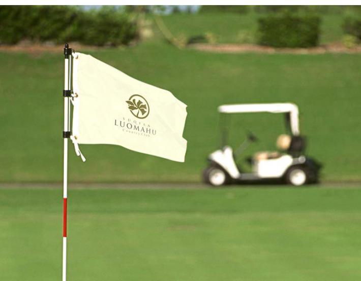 高尔夫vi设计构成是怎样的?设计的重点是什么?