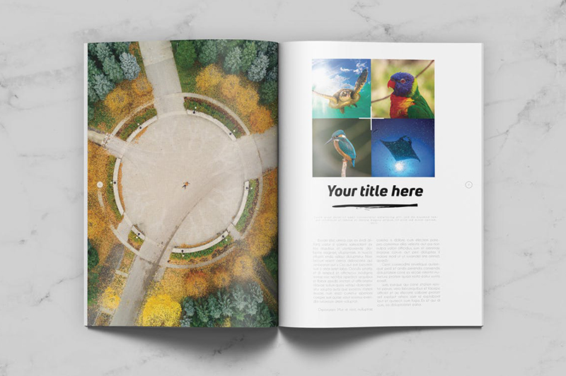顶级画册设计公司都有哪些排版技巧?