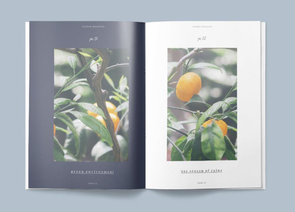 画册设计印刷多少钱?画册设计费是怎么定价?