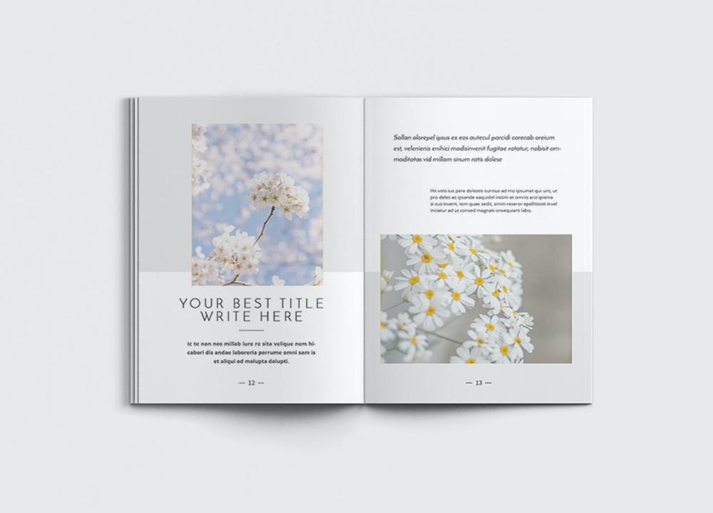 设计一本画册多少钱?画册怎么制作设计?