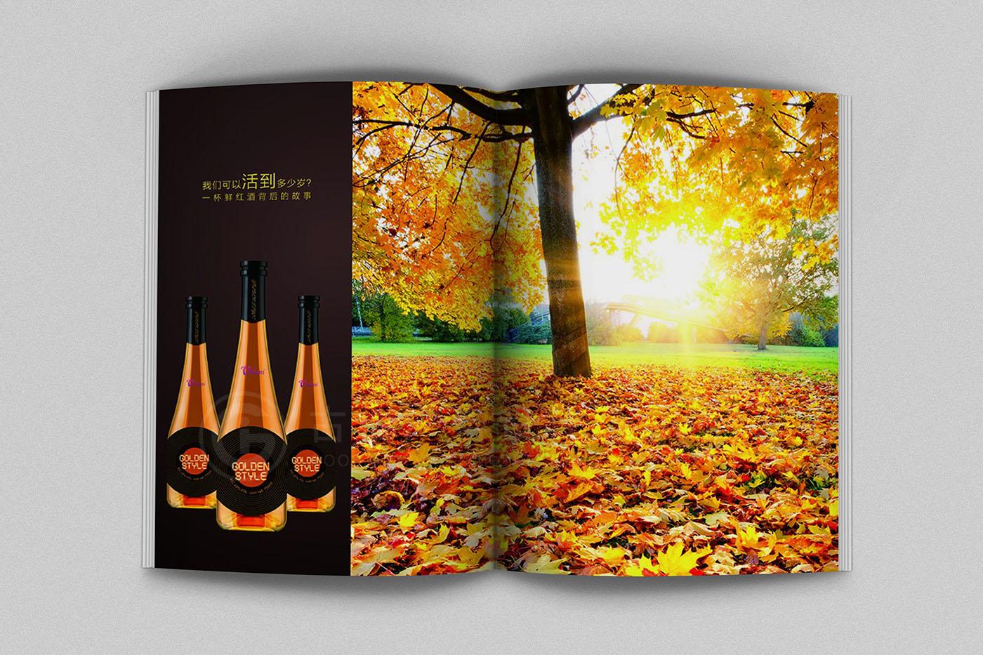 红酒画册设计,红酒画册设计公司