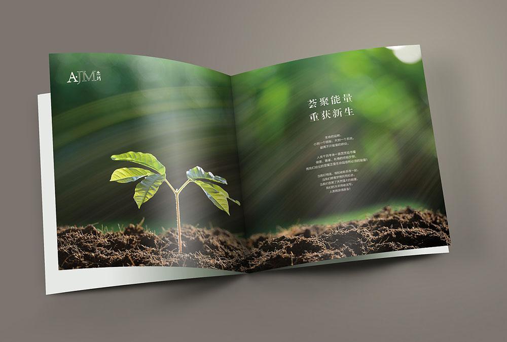 网红化妆品画册封面设计,网红化妆品内容模板设计公司