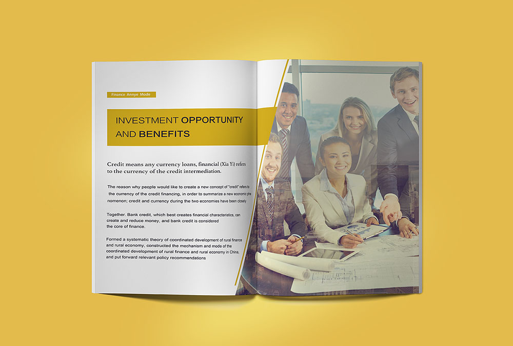 招商画册设计,海外欧美风招商画册设计