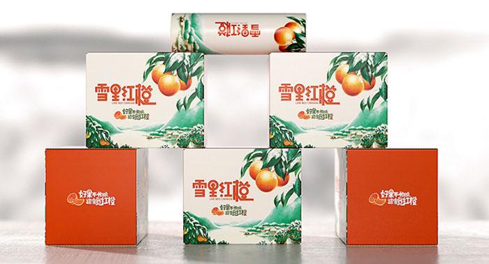 精美橙子包装设计