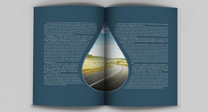 国外风创意画册内页设计案例欣赏