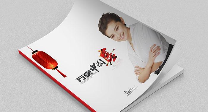 家用电器画册设计-家用电器画册设计公司