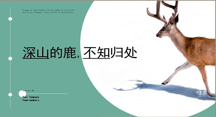 圆形画册设计-圆形画册设计公司
