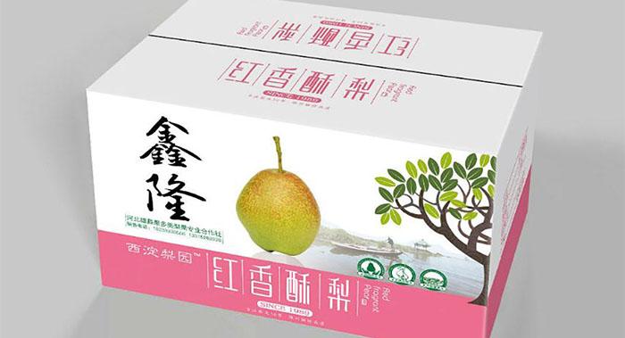 水果外包装设计-水果外包装设计公司