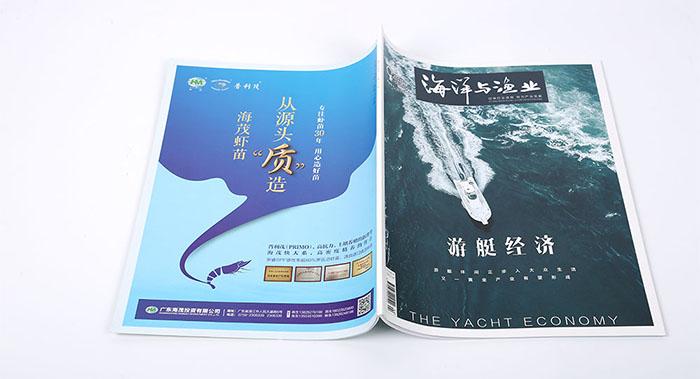 景区期刊杂志设计