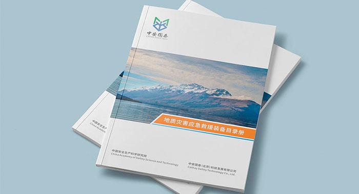 中安国泰宣传册设计